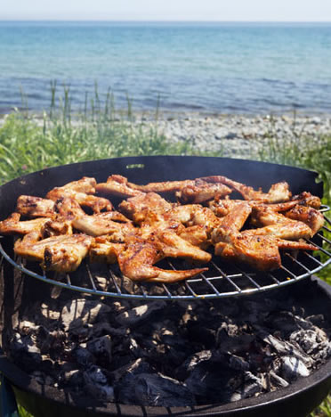 Firewood Cooking: Barbecues
