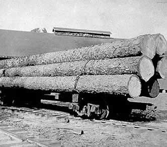 Firewood: Long Logs