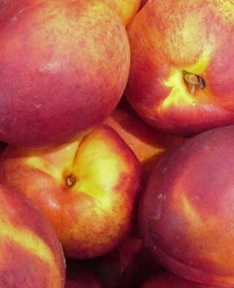 Burning Properties: Nectarine